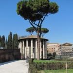 Temple of Hercules - In the Forum Boarium, site of ancient Roman cattle market