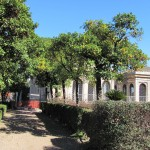 Gardens on the Palatine