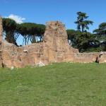 Palatine residences